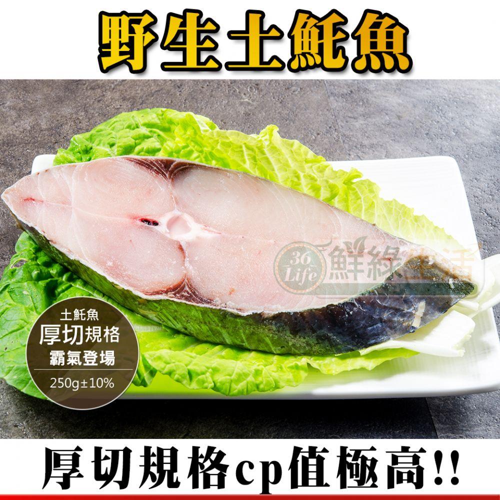 野生土魠魚