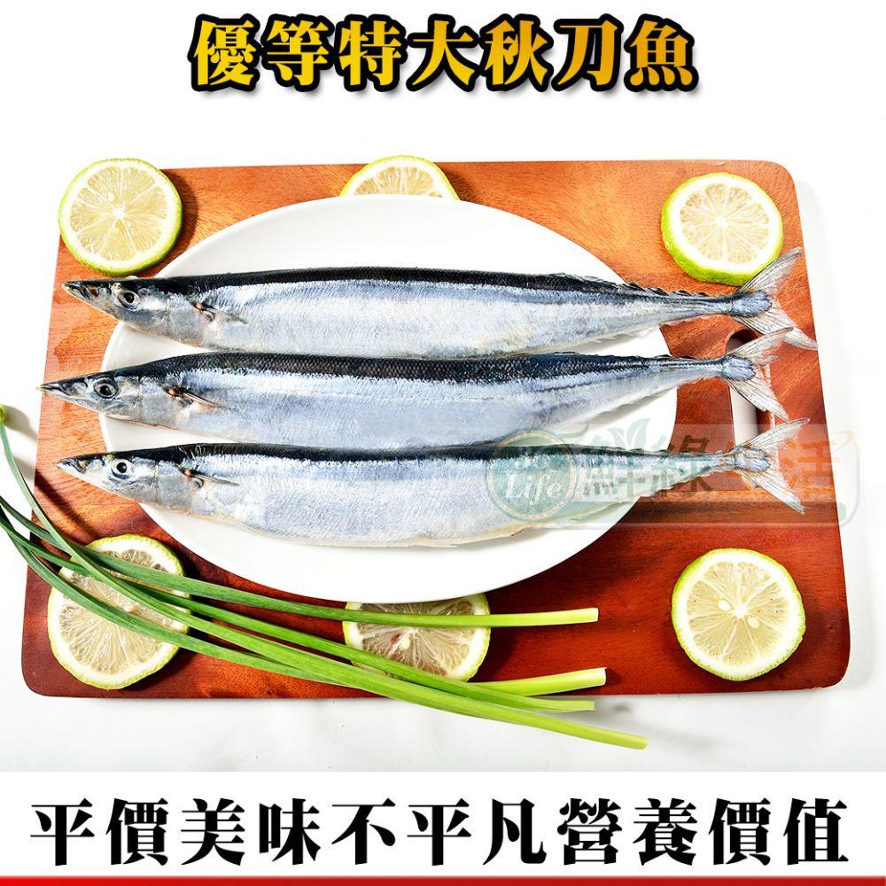 優等秋刀魚2隻