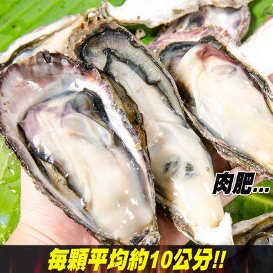 日本全殼生蠔5顆