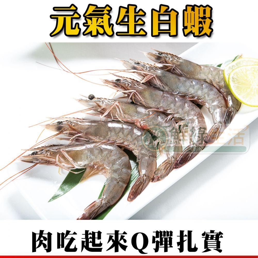 元氣生白蝦
