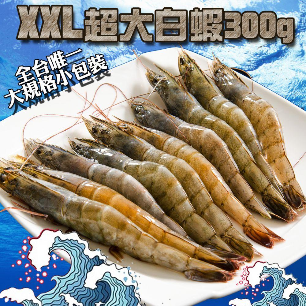 XXL超大活凍白蝦約10尾