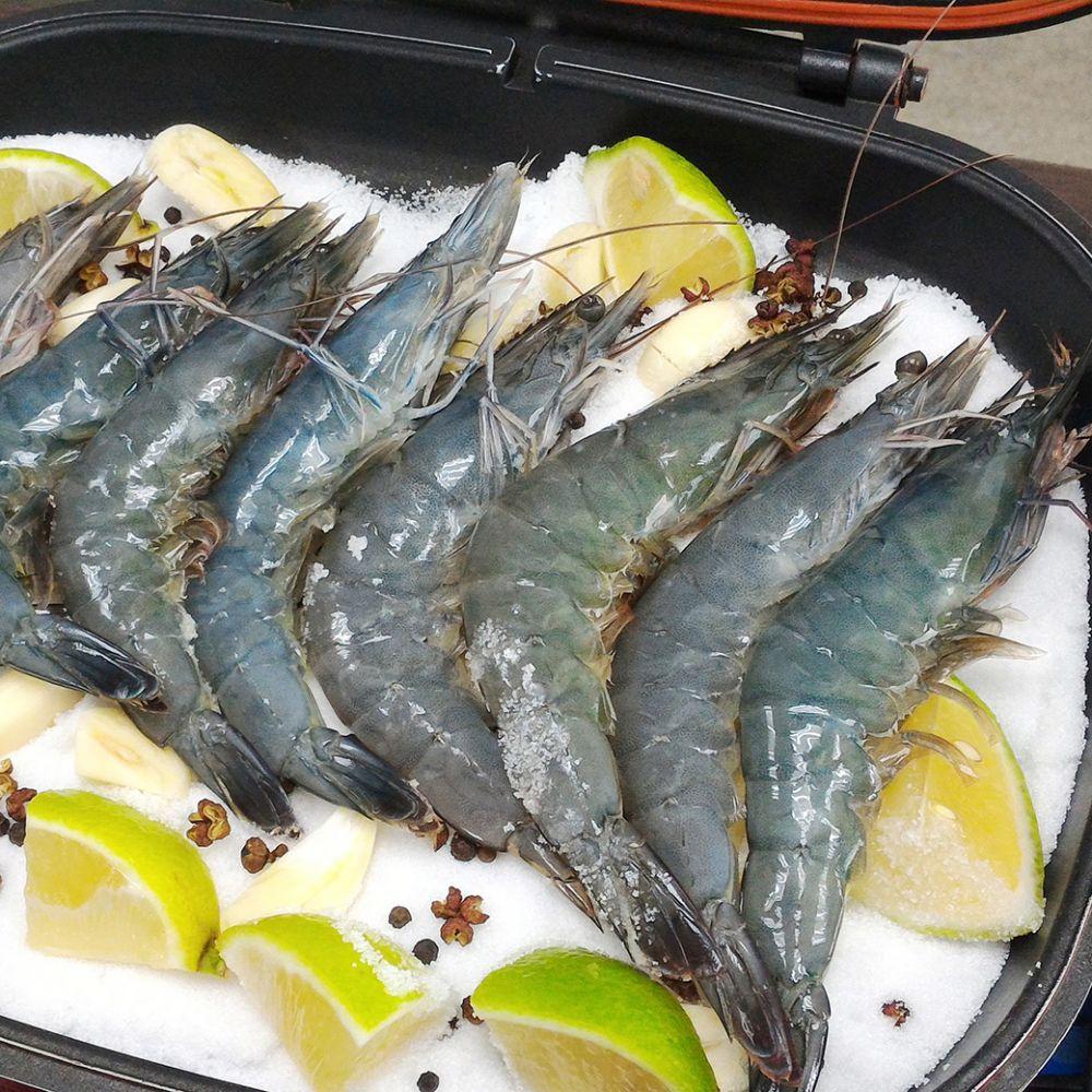 重量級鮮活大白蝦700G