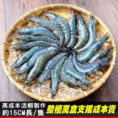 無毒野放活凍白蝦600g(31/40)$279起